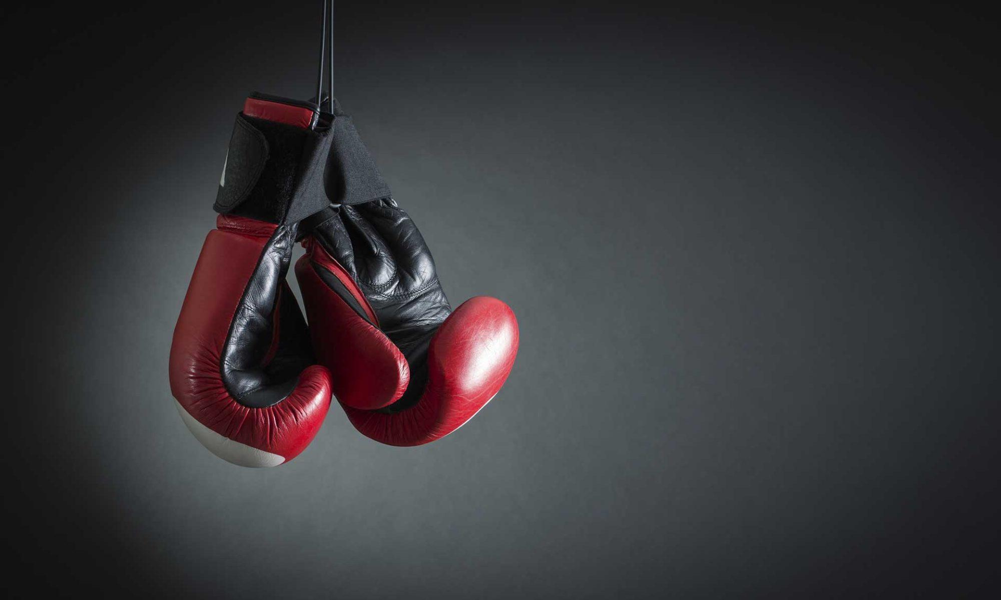Kickbox-Team-Eberswalde
